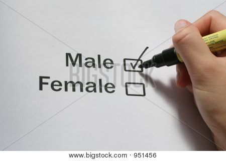 "Mark ""Male"""