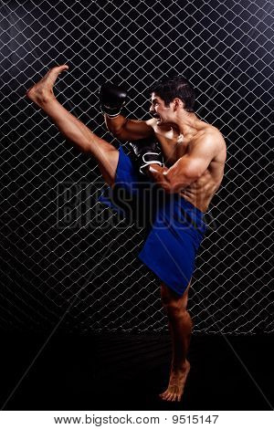 Mixed Martial Artist Posed In Front Of Chain Link