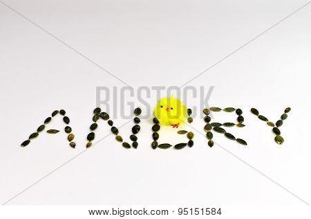 Angry b I.