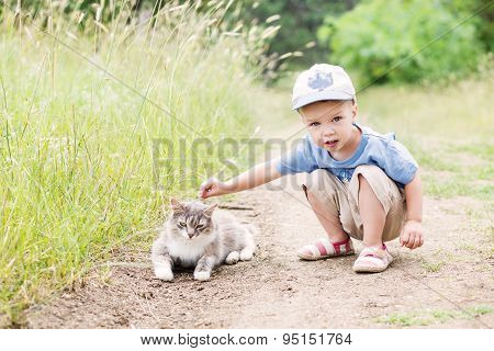 Toddler Boy With A Cat
