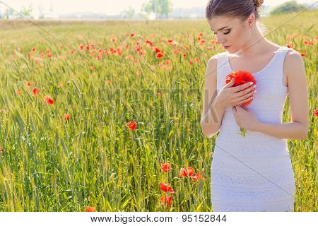 beautiful cute gentle girl in white dress in the poppy field with a bouquet of poppies in the hands