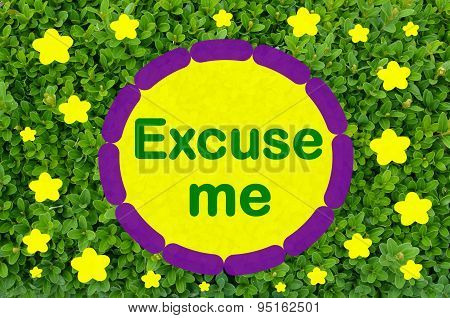 Excuse me message over green background