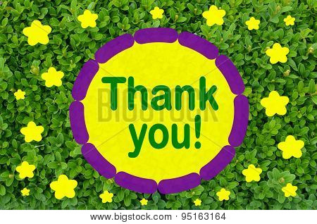 Thank you message over green background