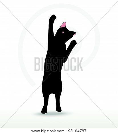 Cat Silhouette In Reach Pose
