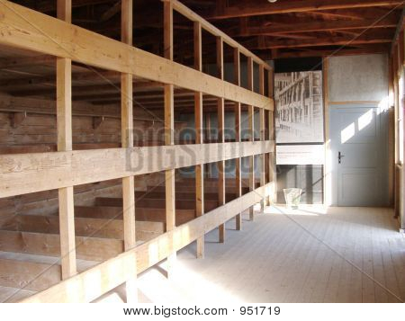 Beds In Concentration Camp