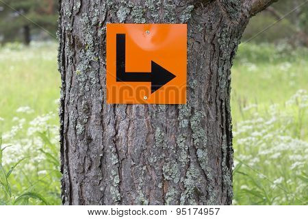 Sign on a tree