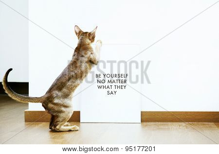 Hipster Scandinavian Design With Cat. Be Yourself