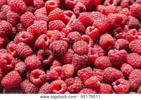 food background with raspberry