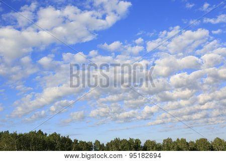 Beautiful cumulus cirrus clouds over forest.