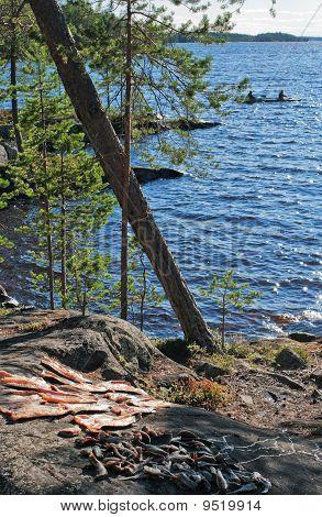 Fishing On Northern Blue Lake