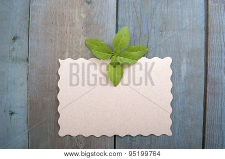 Basil On Old Wooden Boards With Place For Text..