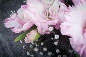 image of gladiolus  - branch of pink gladiolus on wooden table - JPG