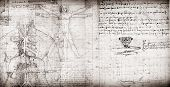 image of leonardo da vinci  - Photo of the Vitruvian Man by Leonardo Da Vinci - JPG