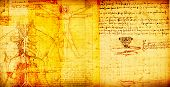 stock photo of leonardo da vinci  - Photo of the Vitruvian Man by Leonardo Da Vinci - JPG