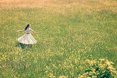 stock photo of fifties  - Woman with a cute vintage outfit from the fifties is dancing on the wildflower meadow golden hour - JPG