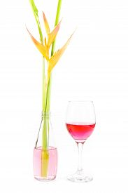image of heliconia  - Beautiful Heliconia with wine glass on white background - JPG