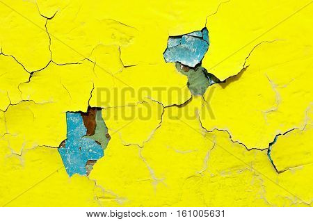 Texture background of bright yellow nad blue peeling paint on the old rough texture surface - texture background with chipped grunge paint on the texture wall