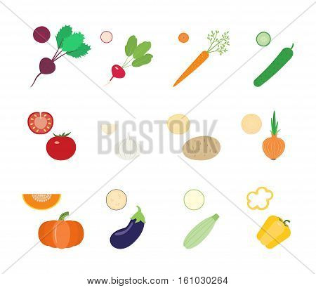 Vegetables and vegetable slices: beetroot radish carrot cucumber tomato garlic potato onion pumpkin eggplant squash pepper