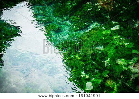 Hot spring with mineral at Phattalung in Thailand Organism under The water spring.