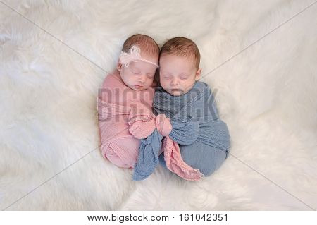 Two month old boy and girl fraternal twin babies. They are sleeping and swaddled together in pink and blue wraps that are tied together in a bow.