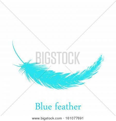 Blue feather falling from the sky on white background