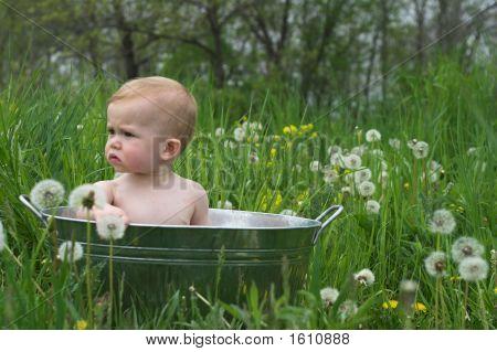 Nature Baby