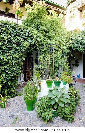 Patio (Innenhof), Cordoba, Andalusien, Spanien