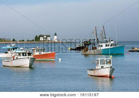 Northern Maine