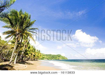 Pinfold Bay, Tobago