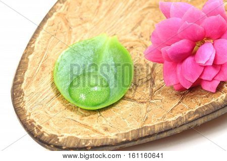 Flower and leaf with water drop on coconut shell. Spa concept