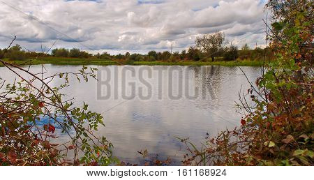Happy walk by the pond with views of cumulus clouds and trees