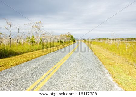road in Everglades National Park, Florida, USA