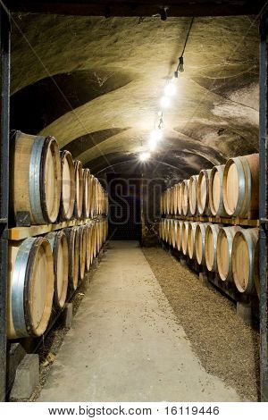 wine cellar, Buxy, Burgundy, France