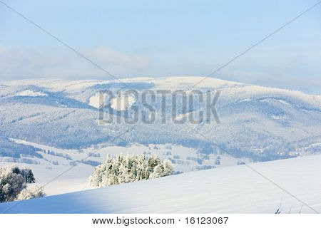 Jeseniky Mountains in winter, Czech Republic