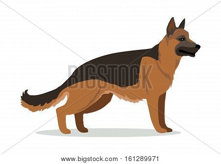 German Shepherd or Alsatian wolf dog isolated on white. Breed of medium to large-sized working dog. Strong intelligent trainable and obedience dog. Home pet. Child pattern icon. Vector illustration