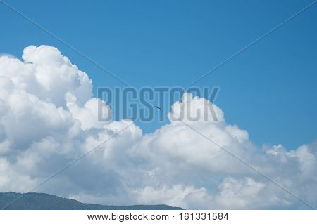 Blue Sky and Puffy Clouds with bird