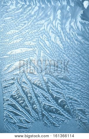 Winter Frosty patterns on the cold window