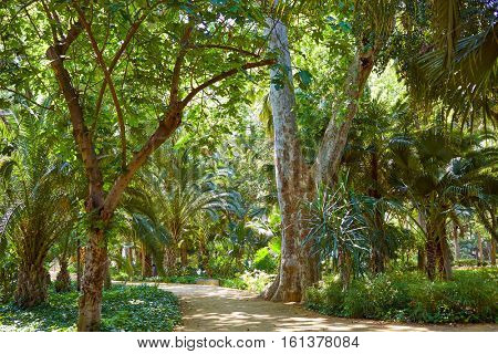 seville maria luisa park gardens in andalucia spain exterior image from public park ground