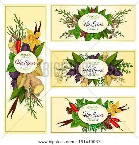 Spice herb and condiment banner set of hot chilli pepper, mint, dill, rosemary, basil, anise, thyme, ginger, vanilla, cinnamon, bay, arugula tarragon fennel Label sticker food design