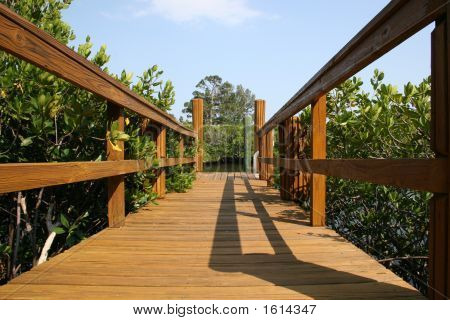 Bridge/Pathway To Success