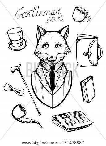 Fox in suit. Gentleman icons. Hand drawn vector illustration.