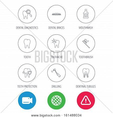 Tooth, dental braces and mouthwash icons. Diagnostics, toothbrush and toothache linear signs. Dentinal tubules, protection flat line icons. Video cam, hazard attention and internet globe icons. Vector