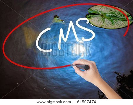 Woman Hand Writing Cms (custom Management System) With Marker Over Transparent Board