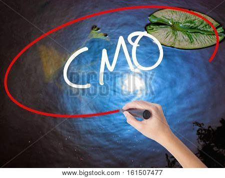 Woman Hand Writing Cmo (chief Marketing Officer)   With Marker Over Transparent Board