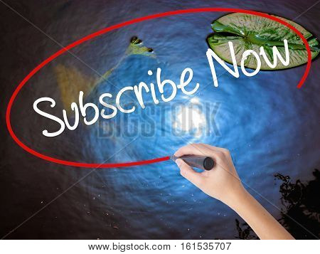 Woman Hand Writing Subscribe Now With Marker Over Transparent Board