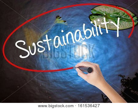 Woman Hand Writing Sustainability  With Marker Over Transparent Board