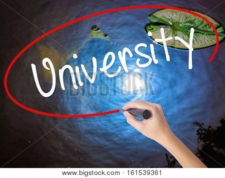 Woman Hand Writing University With Marker Over Transparent Board
