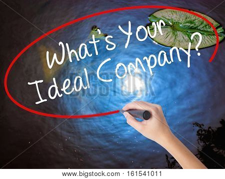 Woman Hand Writing Whats Your Ideal Company? With Marker Over Transparent Board