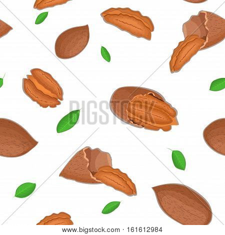 Vector seamless pattern pecan nut. Illustration of peeled nuts and in shell isolated on white background it can be used as packaging design element printing brochures on healthy and vegetarian diet