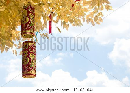 The branch of Chinese Wishing Tree with the traditional Chinese golden firecrackers and red ribbon with a coin bringing you luck and happiness. Chinese New Year ceremony. The image can be used as a background.